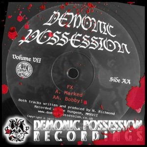 "A Demonic Possession Reocrdings 12""."